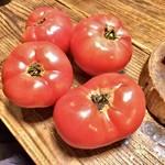 WE ARE THE FARM - 世界一トマト