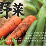 しゃぶしゃぶ温野菜 - 全て国産野菜を使用しております