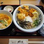 麺匠 やしま - ミニかつ丼 & とり天ぶっかけ(温泉玉子トッピング)