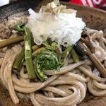 平家そば志おや - 料理写真:山菜おろしそば900円