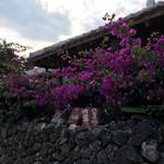 カフェテードゥン しだめー館 - お花