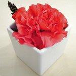 ガット・ネーロ - 卓上のお花です