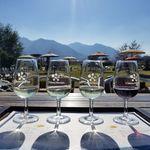 メルシャン ワインギャラリー - ドリンク写真: