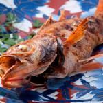 魚屋 小次朗 - 料理写真:特選きんきの塩焼き