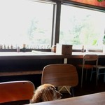 CAFE 日升庵 - 店内(ペットOK)