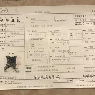 岡山県産黒毛和牛一頭買い