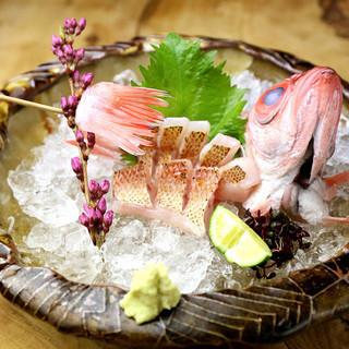 鮮度バツグン!直接契約の魚屋から仕入れた、厳選された鮮魚