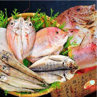 港から直送の季節にあわせた食材で作るお料理をご提供
