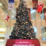 パルケ・ミエール - メルパルク千種 のロビーに飾られた クリスマスツリー。     2018.11.19