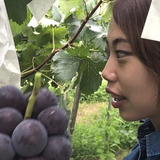 Atoriの食材への探求☆