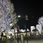 97668288 - 大井町駅前のイルミネーション。