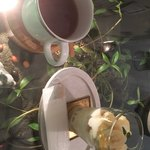 NiiiD cafe -