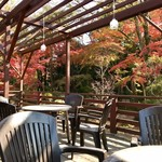 お休み処 桜 売店 - テラス席からの眺め2