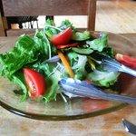 9776187 - ランチのサラダ(好きなだけ野菜を取り分ける・なくなれば追加してくれるようです。)