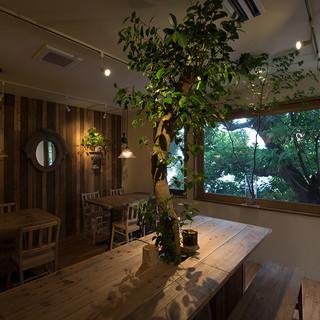 貸切は20名様まで◎憧れのツリーハウスカフェでPartyを*