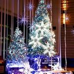 97938495 - 新丸ビルのクリスマスツリー