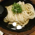 udonsakabakagawaichifuku - 冷やかけ中盛り300g。520円。 具は九条ネギだけのシンプル版。とても淡麗な汁なので、下手に具は追加しないほうが良いのかも。