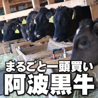 ブランド牛!阿波黒牛まるごと一頭買い!希少部位ステーキ!