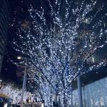麻布永坂 更科本店 - 欅坂のクリスマスイルミネーション