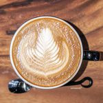 アンモナイト コーヒーマーケット - ラテ
