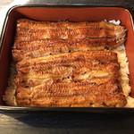 銀座大和田 - 料理写真:鰻重の特:美しい見た目