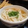 Teuchiudonsumita - 料理写真:天ぷらうどん