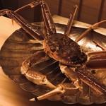 98138954 - 間人蟹。一キロ弱。甲羅に着いた蟹ビルの数からして、年季の入った上物。爪を振り回してこちらを威嚇します