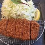 98173115 - 一日限定2食の東京Xヒレカツ