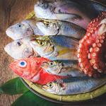 淡路島の魚を中心とした1本魚をざるに乗せてお見せしております。