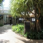 98235004 - アウラニ・ディズニー・リゾート&スパコオリナ・ハワイの一階にあるオーシャンビューのレストランです。