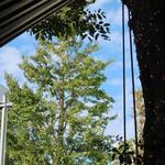 BLUE POINT - テラスの上に秋の空