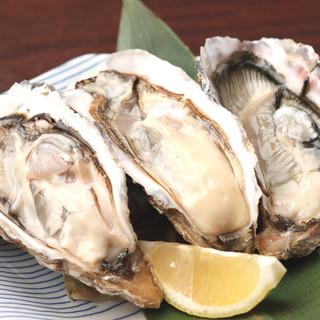 ★期間限定牡蠣一個299円☆厚岸町の人気牡蠣『まるえもん』