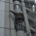 焼肉の龍園 - 隣のビルにキングコング発見!