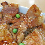 98722564 - 豚丼(梅)