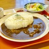 たんちゃ亭 - 料理写真:牛すじカレー