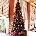 98822641 - クリスマスツリー