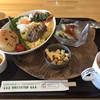ヤマネコテラス - 料理写真:つしまやまねこランチ