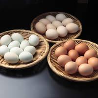 喜三郎農場 - 喜三郎農場で厳選した卵を3~4種類常時用意しております!