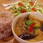 スマイルアース - 料理写真:日替わりタイカレー☆ ご飯は雑穀米を使用しています!