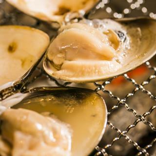 三重県桑名産天然はまぐりの食べ比べも可能。貝の旨味を堪能して