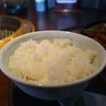 焼肉居酒家 韓の台所 - ライス