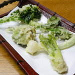 嘉亭 - 山菜天ぷら盛り合わせ