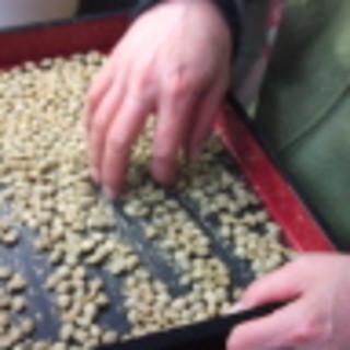 あなたは、「混入物・異物・欠陥豆・カビ豆」が入ったコーヒーを飲んでいませんか?