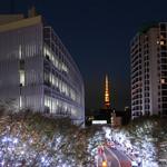 99407225 - 東京タワーとライトアップ