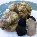 ウニ専門 unico-co - ウンブリア産白トリュフ、マルケ産白トリュフ、神奈川県産黒トリュフ