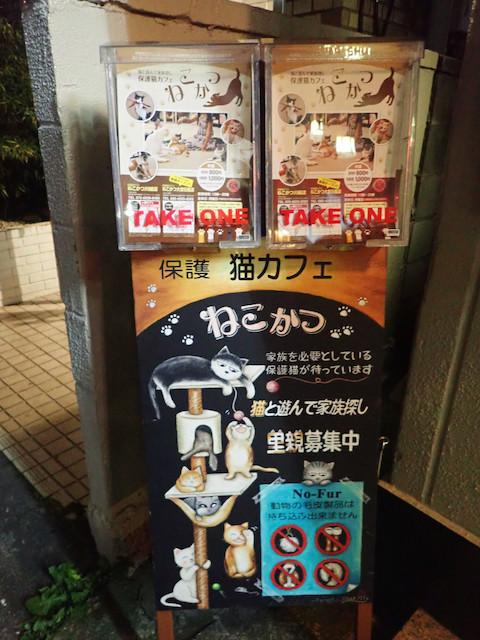 保護猫カフェ ねこかつ 大宮日進店 - 「ねこさんと遊んで里親探し」「No fur」このあたりは川越店と同じミャ。