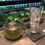 Molecu-L - 玄米緑茶