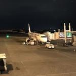 99451062 - JAL便で伊丹空港に飛び立ちます