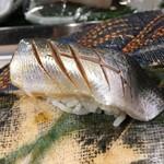 第三春美鮨 - 小鰭 50g 投網漁 佐賀県大浦