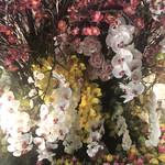 99475744 - 造花
